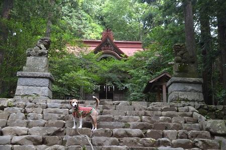 20180613宮尾神社06