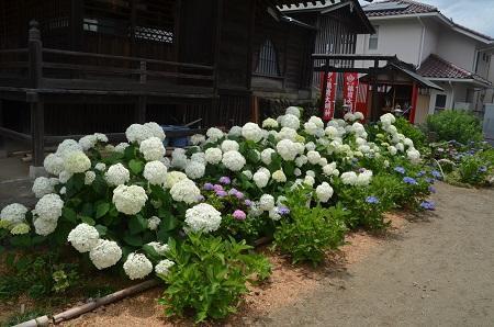 20180613八王子日吉神社18