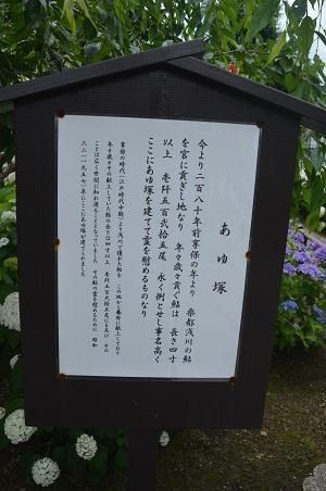 20180613八王子日吉神社15