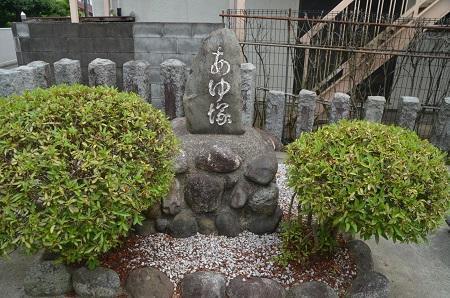 20180613八王子日吉神社14