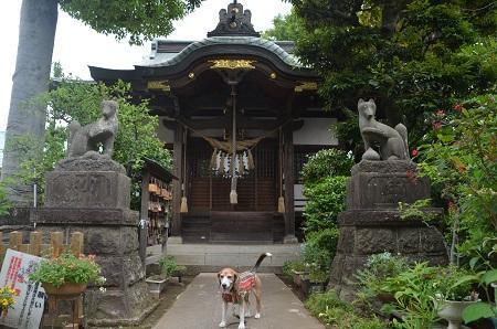 20180613産千代稲荷神社06