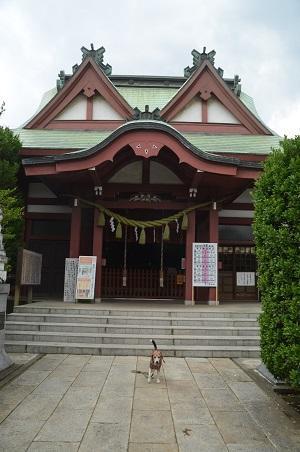 20180613八幡八雲神社