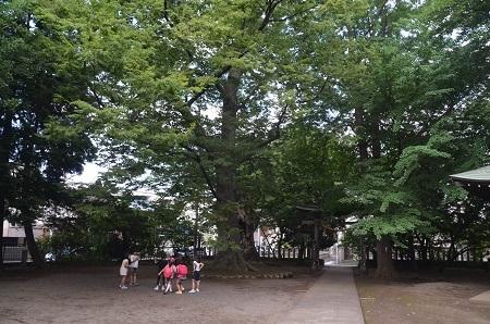 20180613北野八幡社24