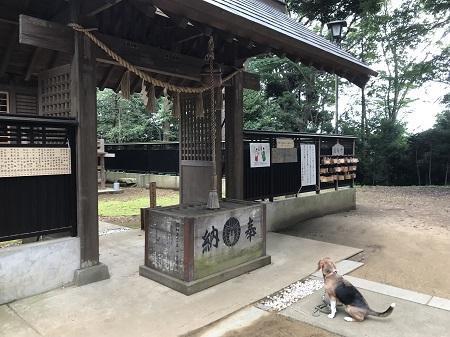 20180617八王子神社12