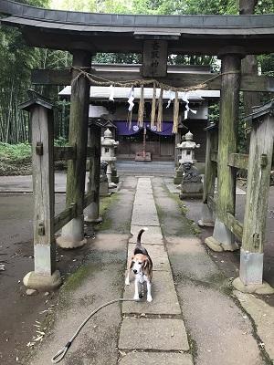 20180617栗山香取神社06