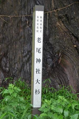 20180621老尾神社18