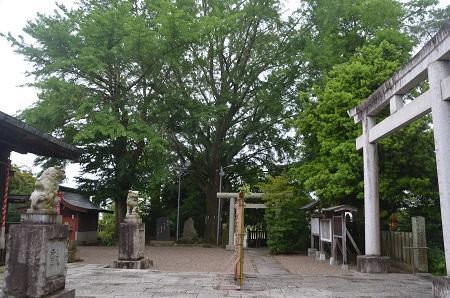 20180621金刀比羅神社40
