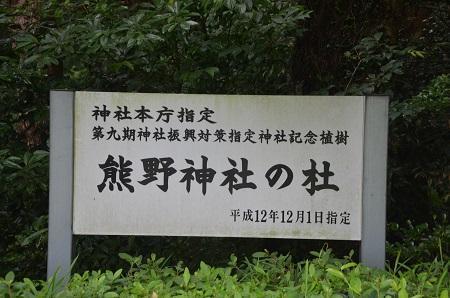 20180621熊野神社10