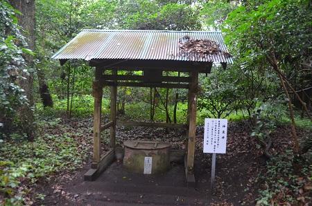 20180621熊野神社36