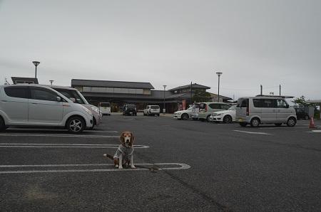 0180621道の駅 オライ蓮沼03
