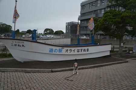 0180621道の駅 オライ蓮沼18