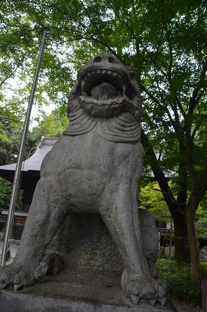 20180626住吉神社24