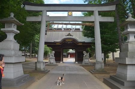 20180627小野神社02