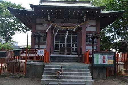 20180708青渭神社13
