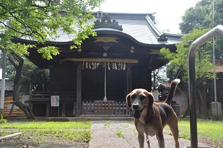 20180708坂濱天満神社14