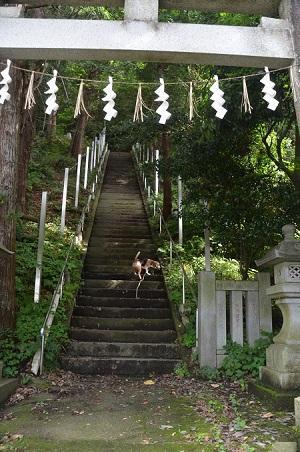 0180708穴澤天神社04