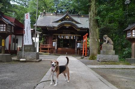 0180708穴澤天神社09
