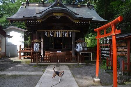 0180708穴澤天神社14