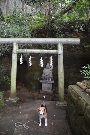 0180708穴澤天神社36