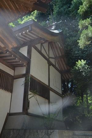 20180709南大沢八幡神社15