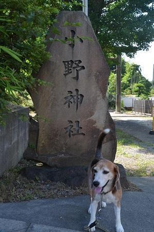 20180709小野神社01