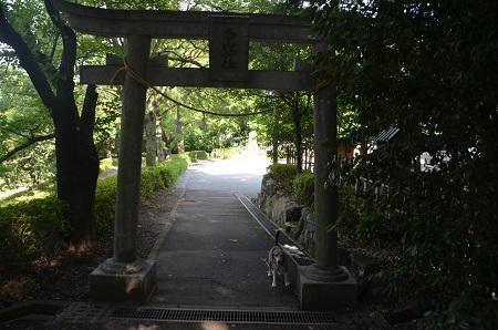 20180709合白山神社17