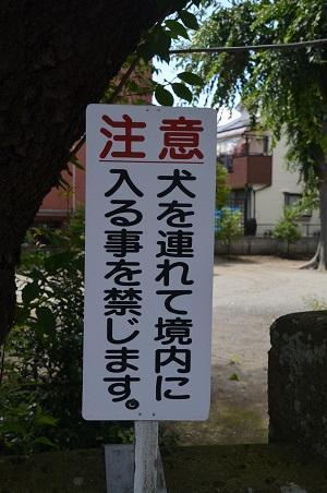 20180709氷川神社03