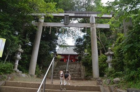 0180715白幡神社02
