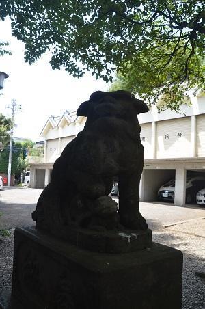 20180723本郷氷川神社14