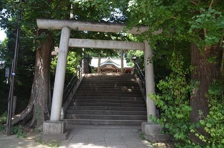 0180723中野氷川神社06