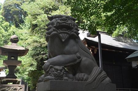 0180723中野氷川神社11