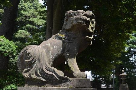 0180723中野氷川神社21