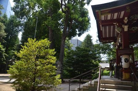 0180723中野氷川神社38