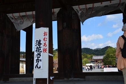 18harukyoto 621