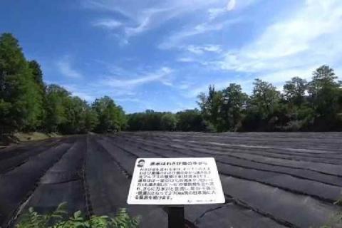 大王わさび農場 8