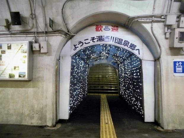 18.6.7-8 尾瀬ヶ原ハイク  (130)