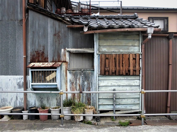 1 18.5.2 武蔵嵐山・仙元山 (168)