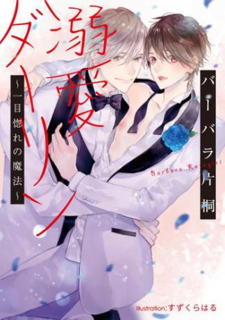 【BL小説】溺愛ダーリン ~一目惚れの魔法~/バーバラ片桐・すずくらはる