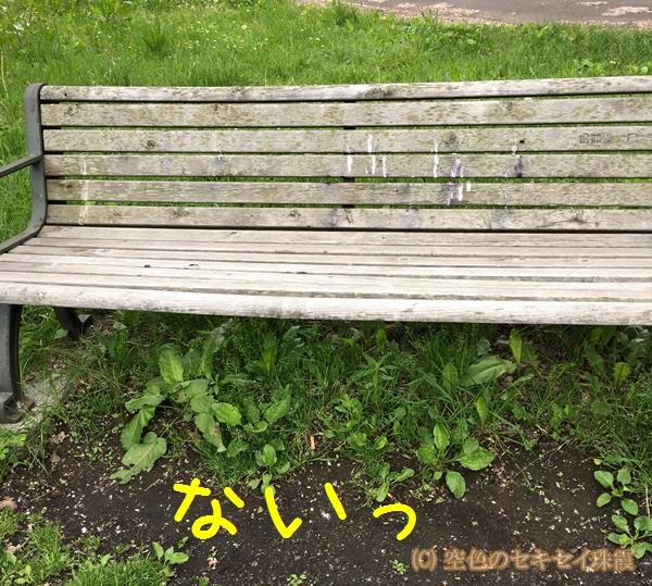 珠霞 空色のセキセイ ハコベ インコ ベンチ
