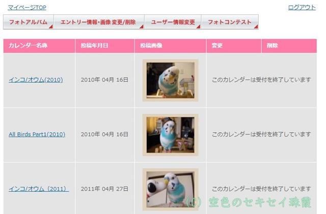 365カレンダー 空色のセキセイ 珠霞 インコ オールバード