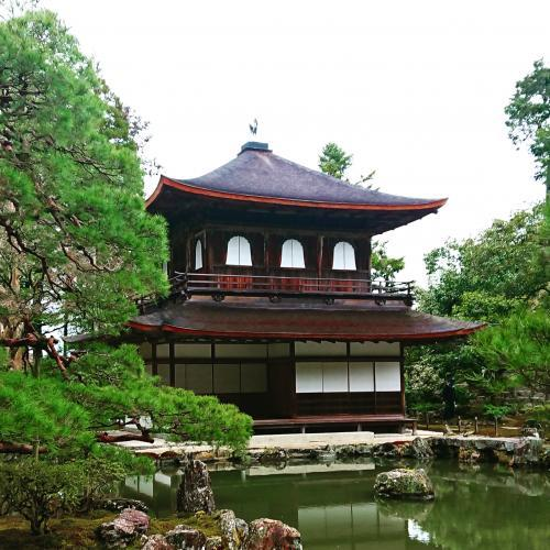 銀閣寺500