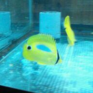 fc2blog_201209032139159e9.jpg