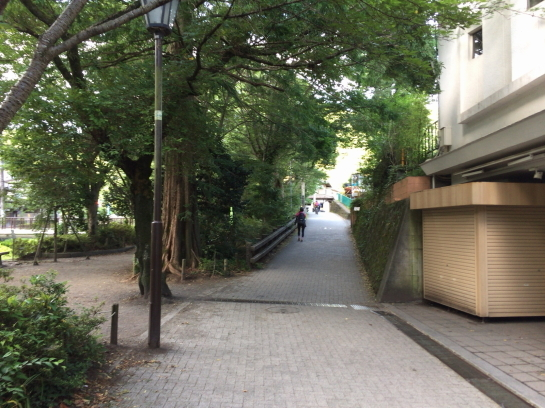 takao18710007.jpg