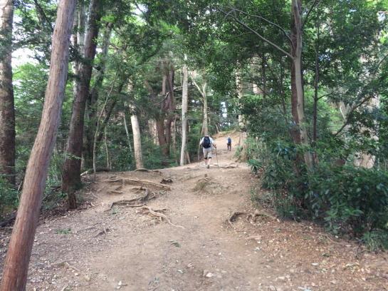 takao18710027.jpg