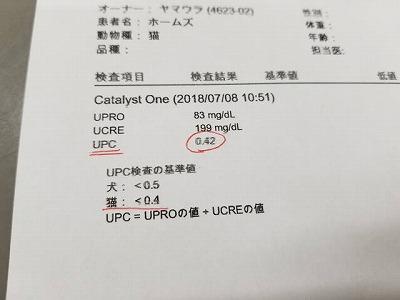 20180708_110216.jpg