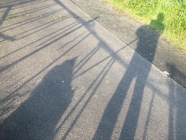 01朝散歩