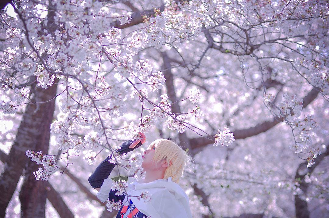 桜ロケ山姥6