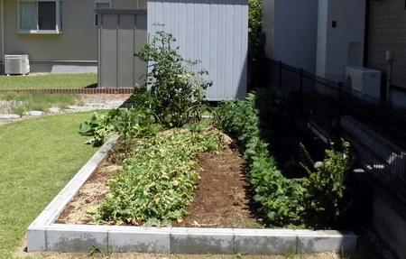 0701菜園1
