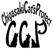 CCP代表