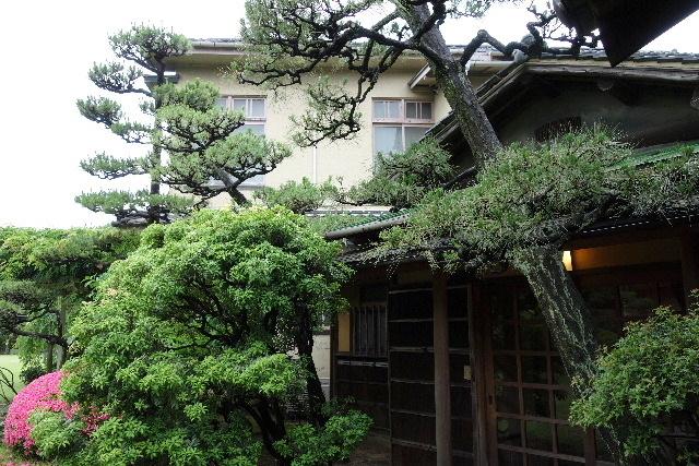 nishiyama0042.jpg